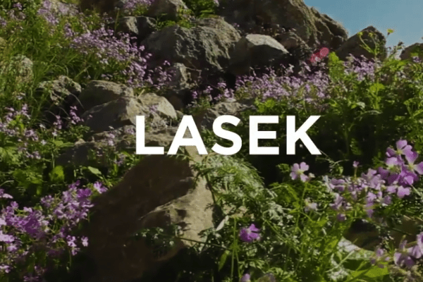 LASEK
